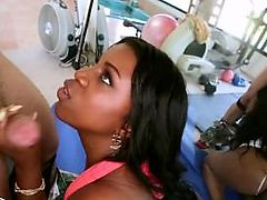 BANGBROS - Ebony Brunette Maserati Has Tremendous Natural Twofold J Huge Tits